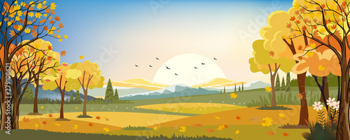 Foto op Aluminium Pistache Panorama landscapes of Autumn farm field with maple leaves falling from trees, Fall season in evening.