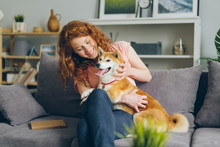 Cheerful Young Lady Happy Dog Owner Is Stroking Beautiful Shiba Inu Puppy On Couch In Flat Sitting Together Smiling. Lifestyle, Love And Friendship Concept.