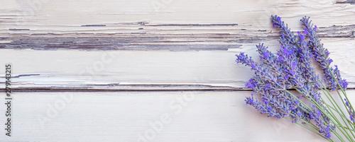 Summertime - lavender flowers. Bunch of lavender flowers on white rustic wooden background. - 279143215
