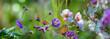 Leinwandbild Motiv The panoramic view the garden with flowers and butterflies