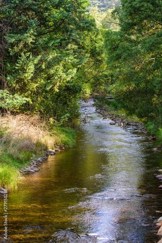 Photo Kiewa River at Mt Beauty, in the alpine high country region in Victoria Australi