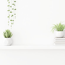 Interior Wall Mockup With Plants In Pots And Pile Of Books Standing On On Empty White Background. 3D Rendering, Illustration.