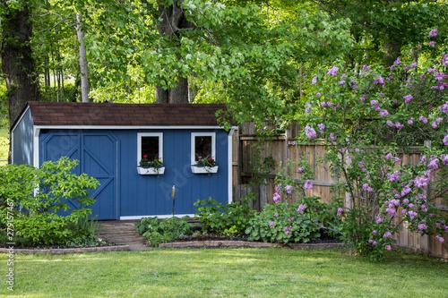 Fotomural Garden shed in backyard