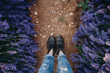 POV Shot From Above On Woman Feet In Brown Leather Vintage Boots And Raw Denim Jeans Stand On Path Or Trail In Lavender Field Between Beautiful Purple Flowers, Inspirational Exploring Blog Post