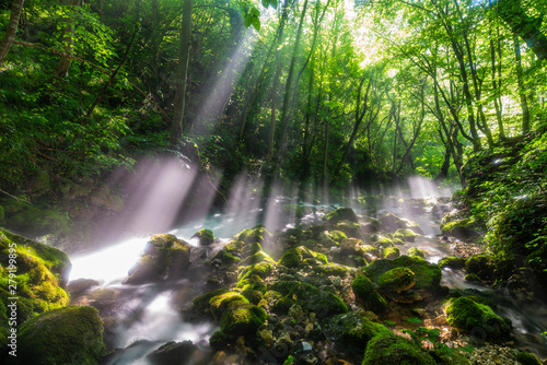 Canvas Prints Forest river Morning sun flare light at Bigar Waterfall,Caras-Severin,Romania