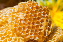 Sweet Honeycomb Bee Products