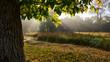 Leinwandbild Motiv Morning autumn landscape on a meadow in the countryside. Amazing beautiful landscape.