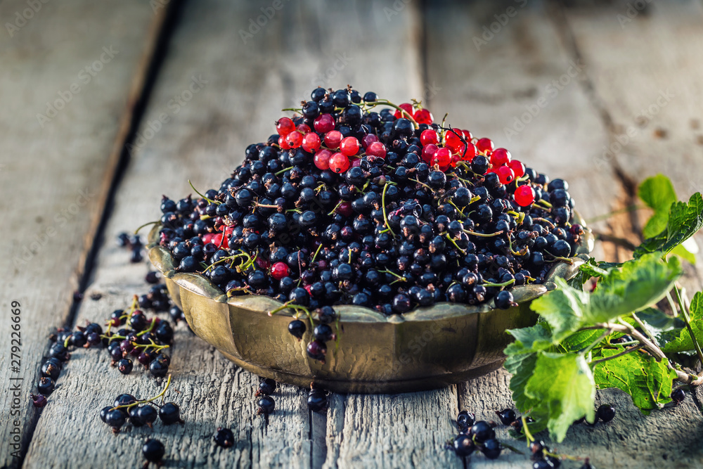 Fototapety, obrazy: Black and red currant in bronze bowl on garden table