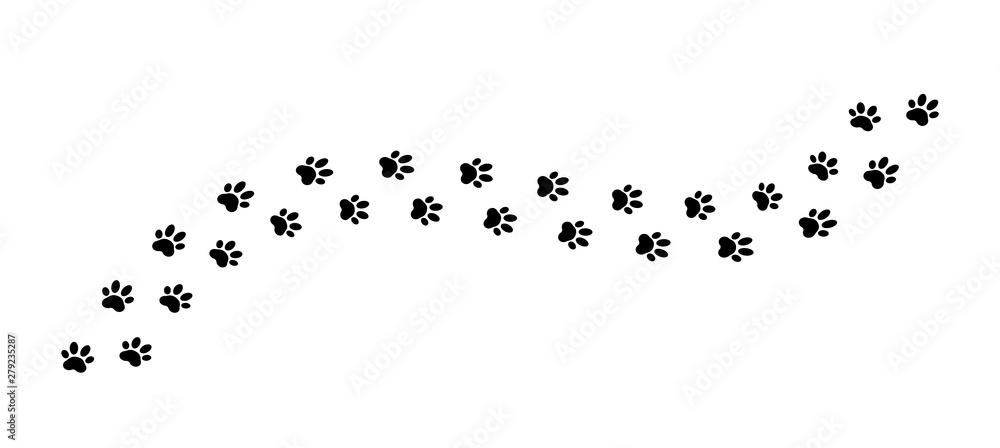 Fototapety, obrazy: Paw print track on white background. Vector illustration