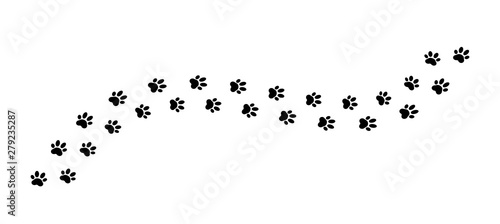 Fotomural  Paw print track on white background. Vector illustration