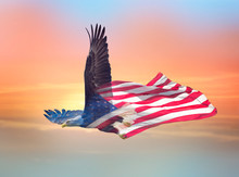 Double Exposure Effect Of North American Bald Eagle On American Flag.