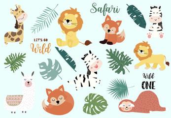 Safari object set with fox,giraffe,zebra,sloth,llama,leaves. illustration for sticker,postcard,birthday invitation.Editable element