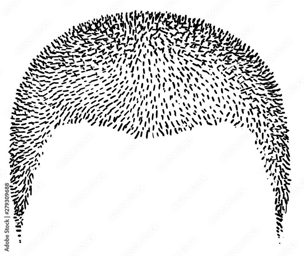 Fototapeta Trendy hairstyle illustration, drawing, engraving, ink, line art, vector