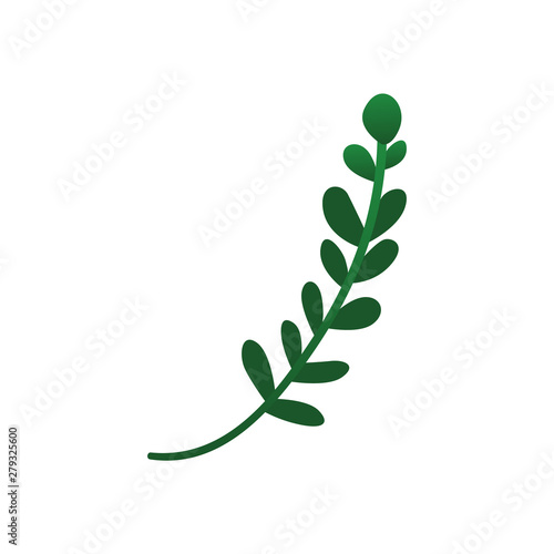 Cute green plant twig with round leaves Wallpaper Mural