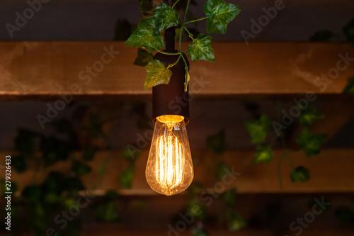 Fotografija Modern light bulb in eco-friendly bistro