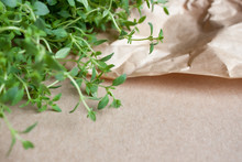 Thyme Plant Background.