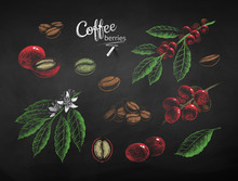 Vector Chalk Drawn Set Of Coffee Illustrations