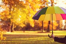 Fall Season Concept Card