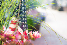 Small American Flag In A Plant...