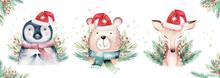 Watercolor Cute Baby Bear, Dee...