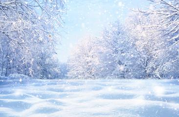 Winter Christmas idyllic la...