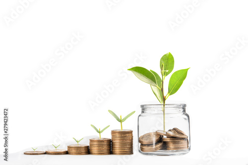 Fotografía  coins with seed in clear bottle on white background,Business investment growth c