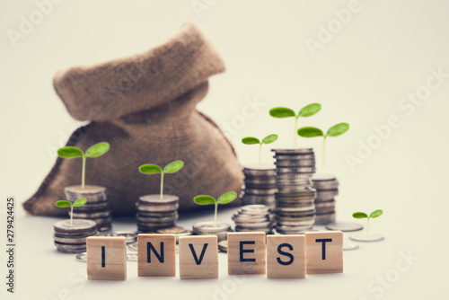 Fotomural  investment concept with plant growing on stacking coins.