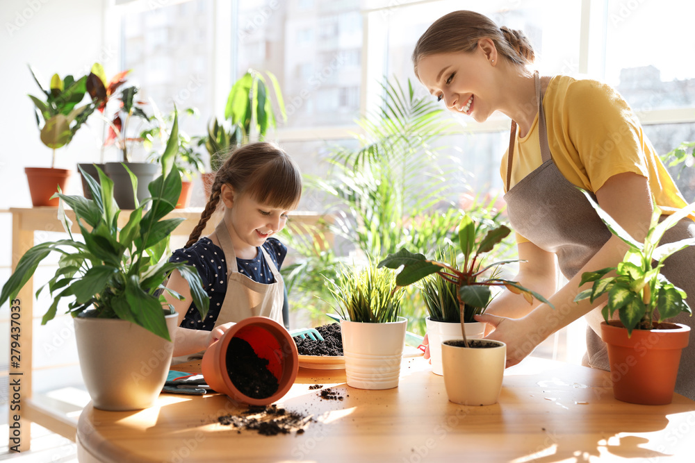 Fototapety, obrazy: Mother and daughter taking care of home plants at table indoors