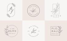 Set Of Feminine Vector Signs Or Logo Templates - Vector