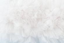 White Tule Background With Soft Ruffled Fabric