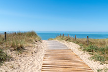 Wooden Path Access In Sand Dune Beach In Vendee On Noirmoutier Island In France
