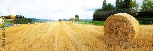 Harvested grain field and straw bales Wallpaper Mural