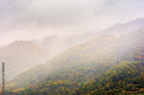 Fotobehang Crimson autumn rainy day in mountains. beautiful nature background. trees on the hill in fall foliage. overcast weather
