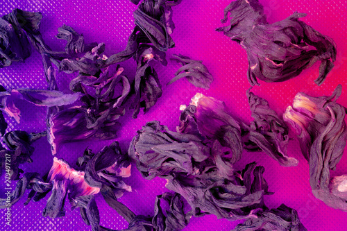 Dried herbal flower particles macro background. Purple and pink colors design pattern - 279497217