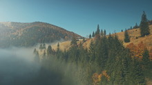 Wild Nature Highland Foggy Scenery Aerial View. Mountain Coniferous Forestry Slope Landscape Overview. Colorful Hill Wood Habitat Countryside Hut Clean Ecology Concept Drone Flight