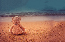 Teddy Bear Sit Alone At The Se...