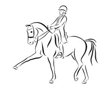 Sketch Of A Dressage Rider On ...