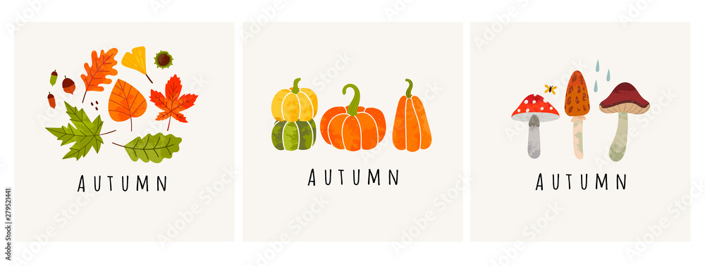 Fototapety, obrazy: Autumn mood. Set of three colored trendy vector illustrations. Hand drawn various mushrooms, pumpkins and leaves. Flat design. Stamp texture. Greeting cards. Every illustration is isolated