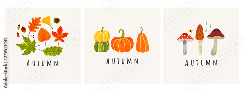 Fototapeta Autumn mood. Set of three colored trendy vector illustrations. Hand drawn various mushrooms, pumpkins and leaves. Flat design. Stamp texture. Greeting cards. Every illustration is isolated obraz