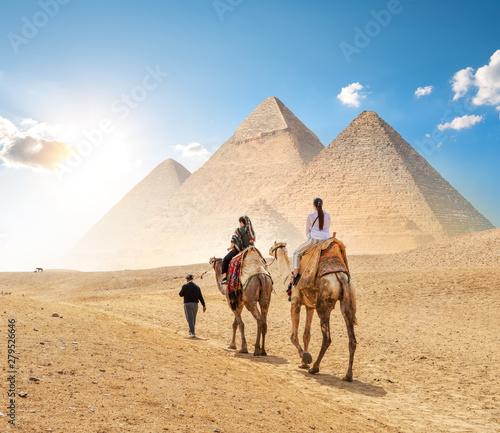 Keuken foto achterwand Kameel Camels in sandy desert