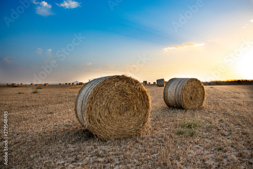 Fotografie, Tablou beautiful scenery of haystacks on the golden field, sunset, beautiful blue sky a