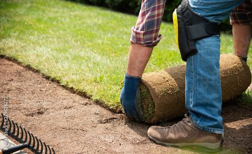 Fotografía Installing turf rolls in the garden