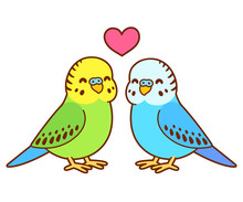 Cute Cartoon Budgie Couple