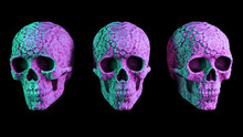 Three Colorful Neon Skull Hall...