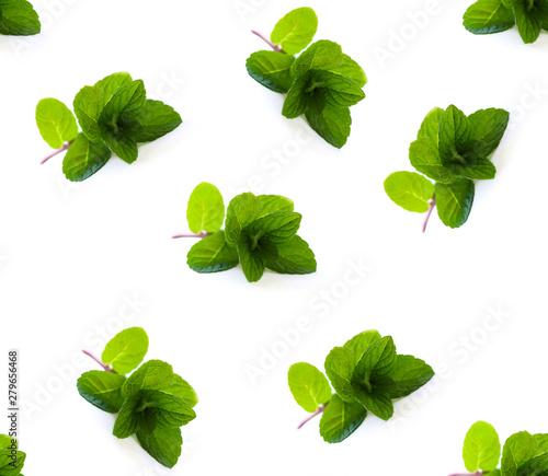 Fototapeta Pattern of herbs, green mint on white background obraz na płótnie