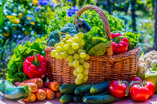 Photo  Variety of fresh organic vegetables and fruits in the garden