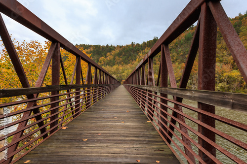Footbridge crossing the James River, Virginia Wallpaper Mural