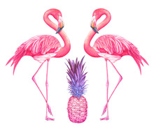 Two Flamingos With Pink Pineapple Isolated On White Background. Hand Drawn Watercolor Illustration.