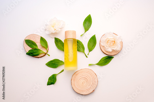 Poster Spa natural cosmetic cream , serum, skincare blank bottle packaging with leaves herb, wood . bio organic product.beauty and spa concept.