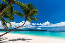 A Beautiful Tropical Beach With Palm Trees And Shallow, Clear Ocean (White Beach, Boracay)